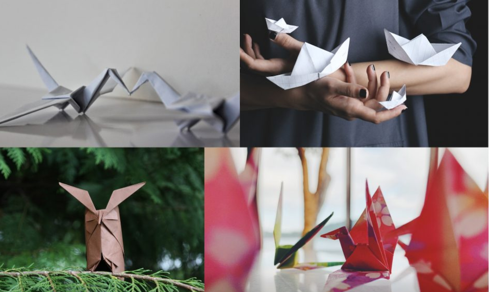 Lexus origami cat competition is inspired by takumi artists
