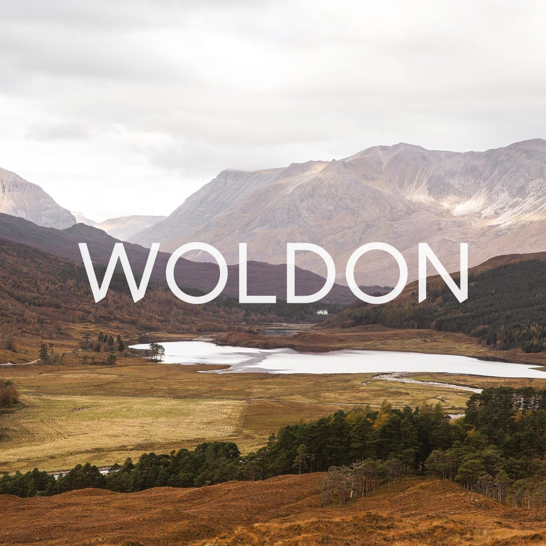 Woldon brand name and identity by © Spinach Branding